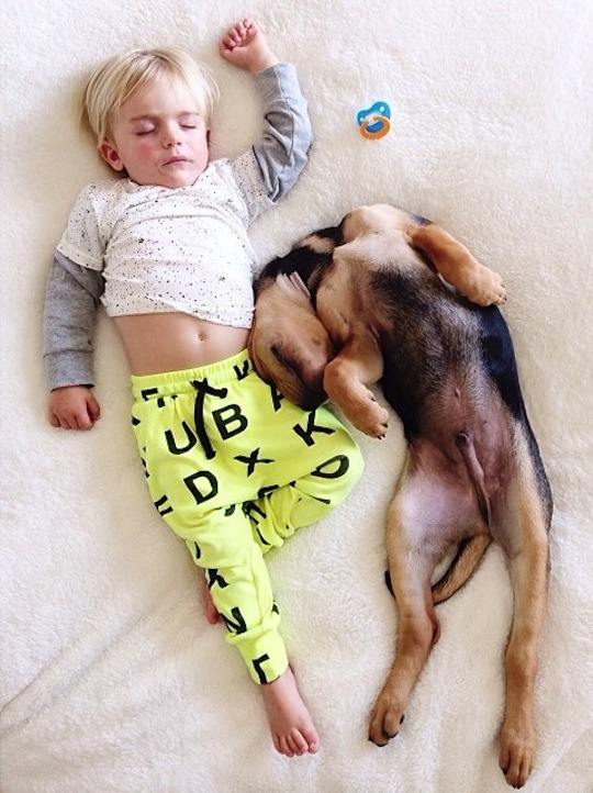 sieste casual entre Beau et Theo