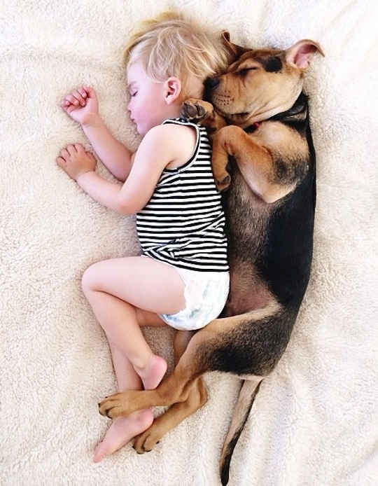 Baby and Dog napping together on a white cover